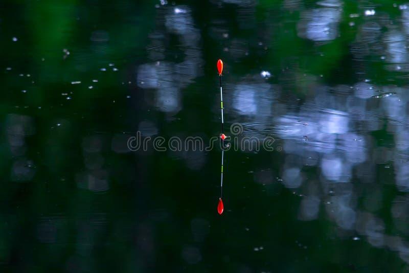 钓鱼在水的浮游物 钓鱼在湖 河的基于 钓鱼浮游物齿轮的 与浮子的渔的滑车 库存图片