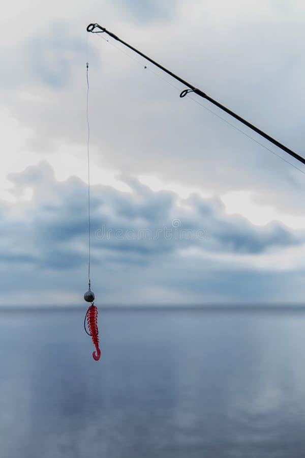 钓鱼在湖作为爱好,设法捉住在转动r的鲤鱼 免版税库存照片