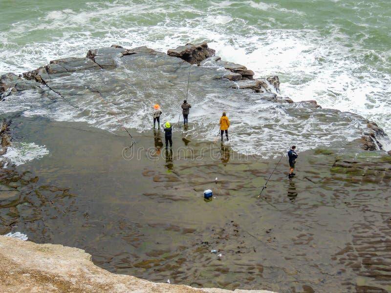 钓鱼在Maukatia毛利人海湾和Muriwai海滩,奥克兰,新西兰 免版税库存图片