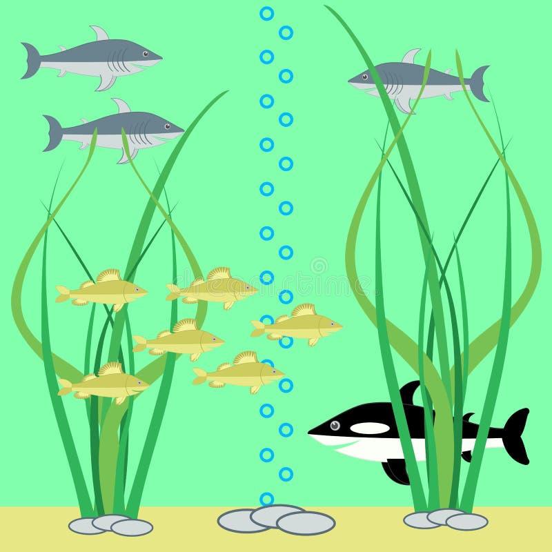 钓鱼场面水中 库存例证