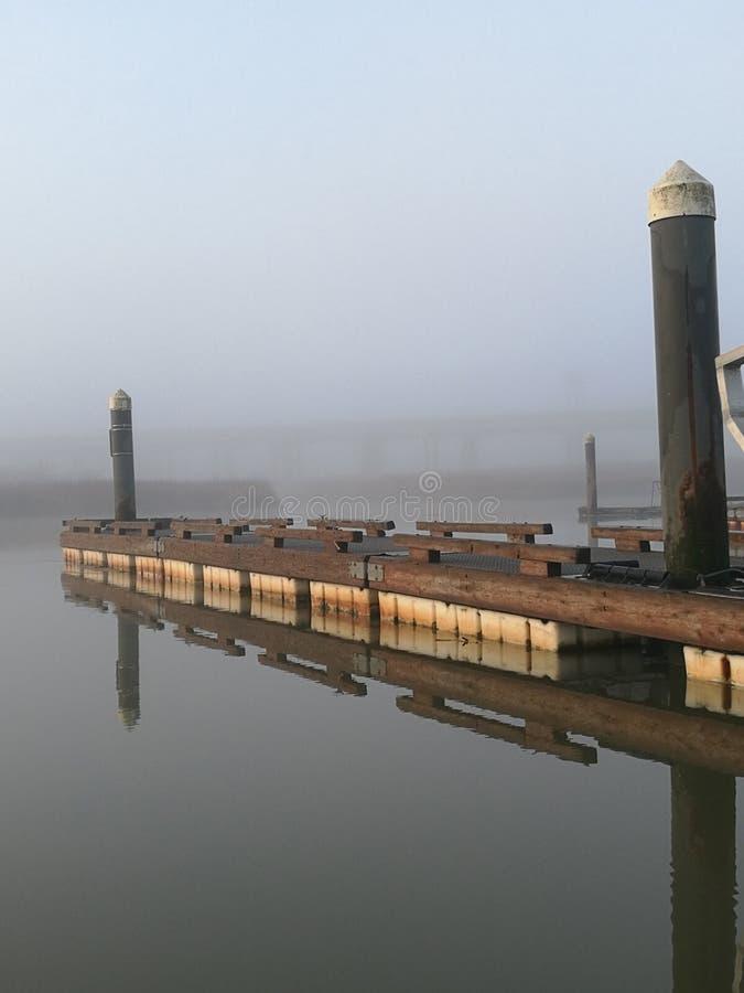 钓鱼有雾 库存照片