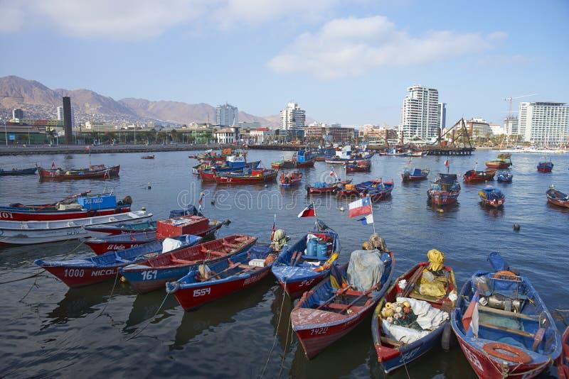 钓鱼海港在安托法加斯塔,智利 免版税库存照片