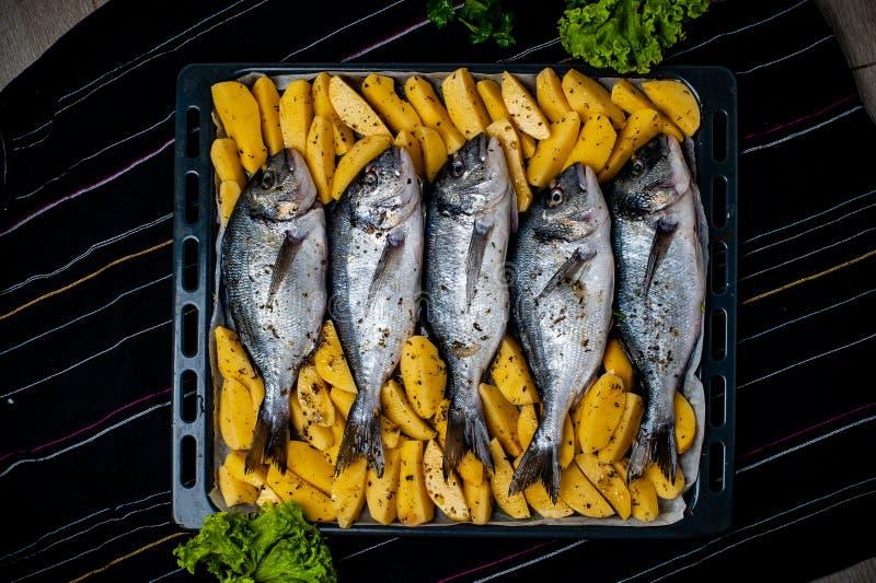 钓鱼烘烤的Sparus aurata用土豆和绿色 免版税库存图片