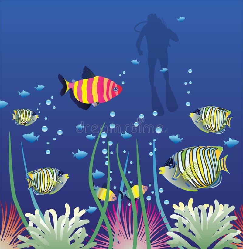 钓鱼热带 向量例证
