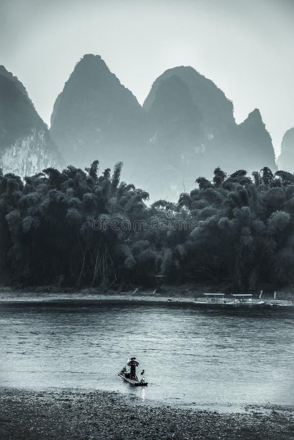 钓鱼的鸬鹚,广西省,中国 免版税库存图片