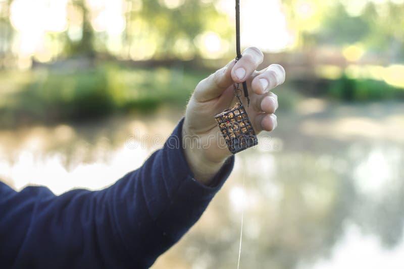 钓鱼者` s手拿着有诱饵的一个groundbait箱子 免版税库存图片