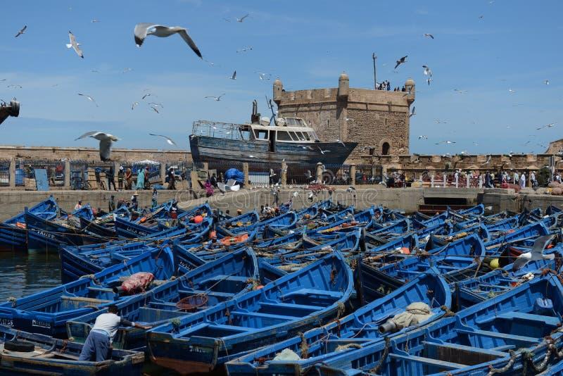 钓鱼蓝色小船 索维拉口岸在摩洛哥 库存图片