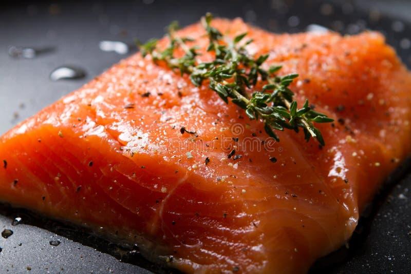 钓鱼鳟鱼 免版税库存照片