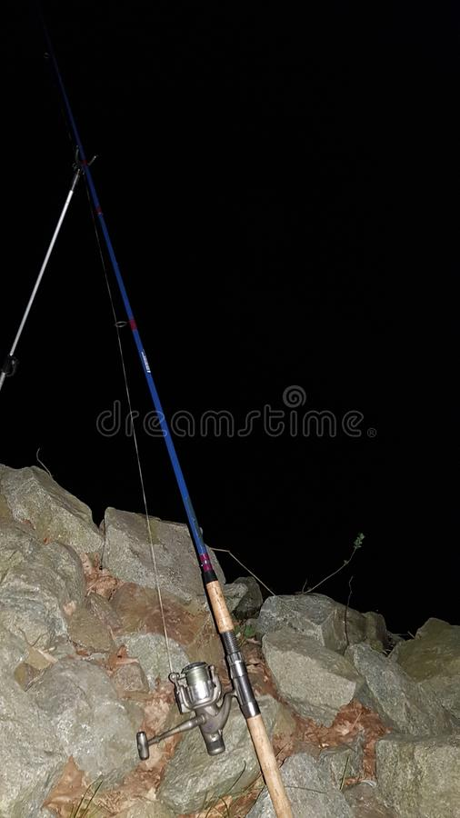 钓鱼黑暗的夜德国鱼 免版税库存图片