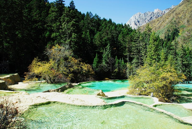 钙化的huanglong池塘 免版税库存照片