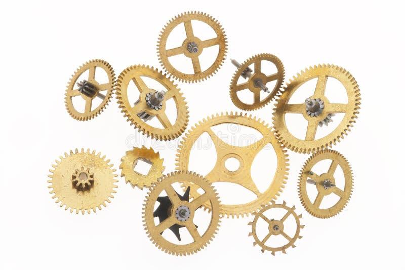 钝齿轮上色了金子 免版税图库摄影