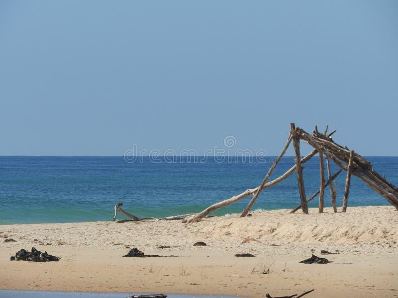 钢海滩, Scamander,塔斯马尼亚岛 库存照片