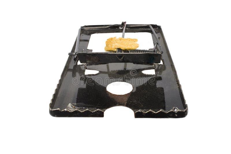钢老鼠陷井和诱饵,在白色背景隔绝的肮脏的老鼠陷井 免版税图库摄影