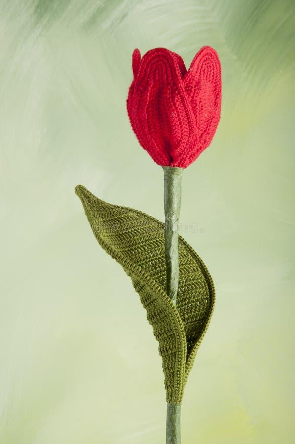 钩编编织物的花郁金香 免版税图库摄影