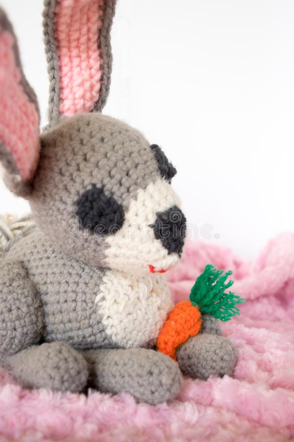 钩针编织的Amigurumi兔宝宝用红萝卜 免版税库存照片