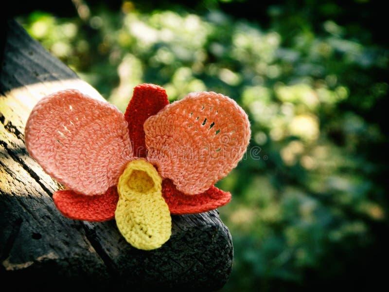 钩针编织的花 橙色兰花 图库摄影