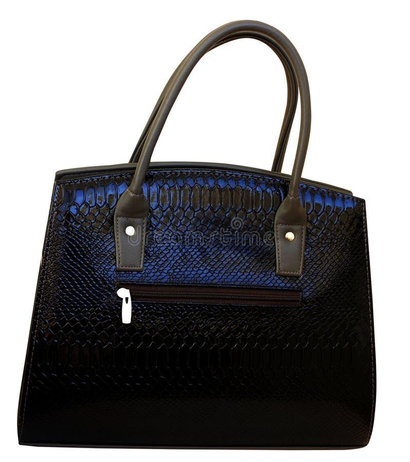 钱包、袋子或者袋子,鳄鱼在被隔绝的白色背景的皮肤纹理 时装配件的概念 皮革钱包,颜色 免版税库存照片