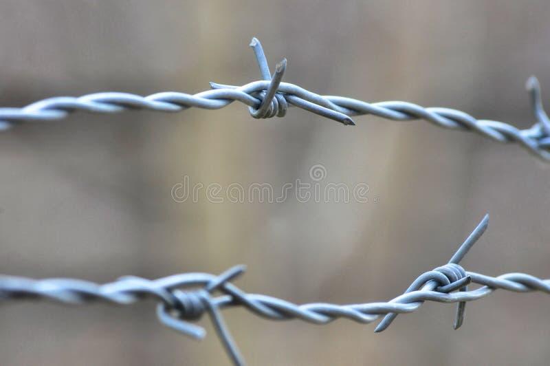 铁丝网 免版税库存照片