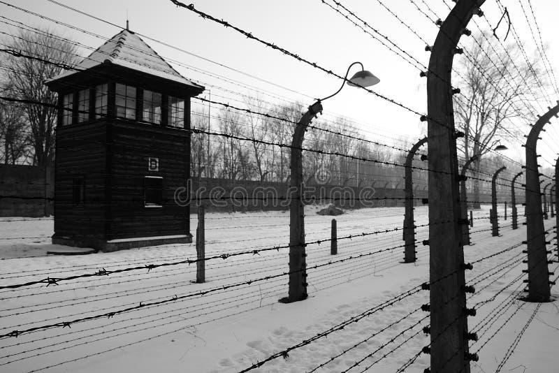 铁栅格在奥斯威辛波兰 库存照片
