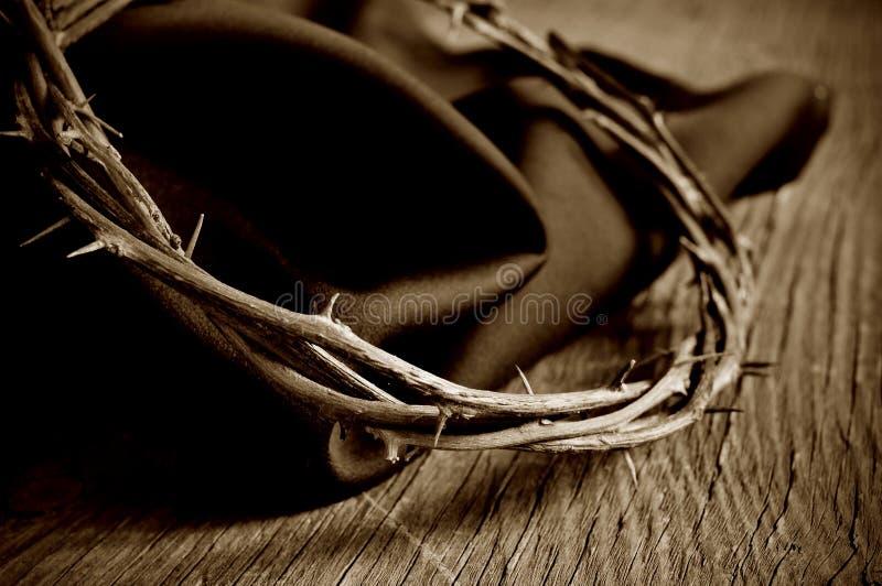 铁海棠耶稣基督,乌贼属定调子的 免版税库存图片