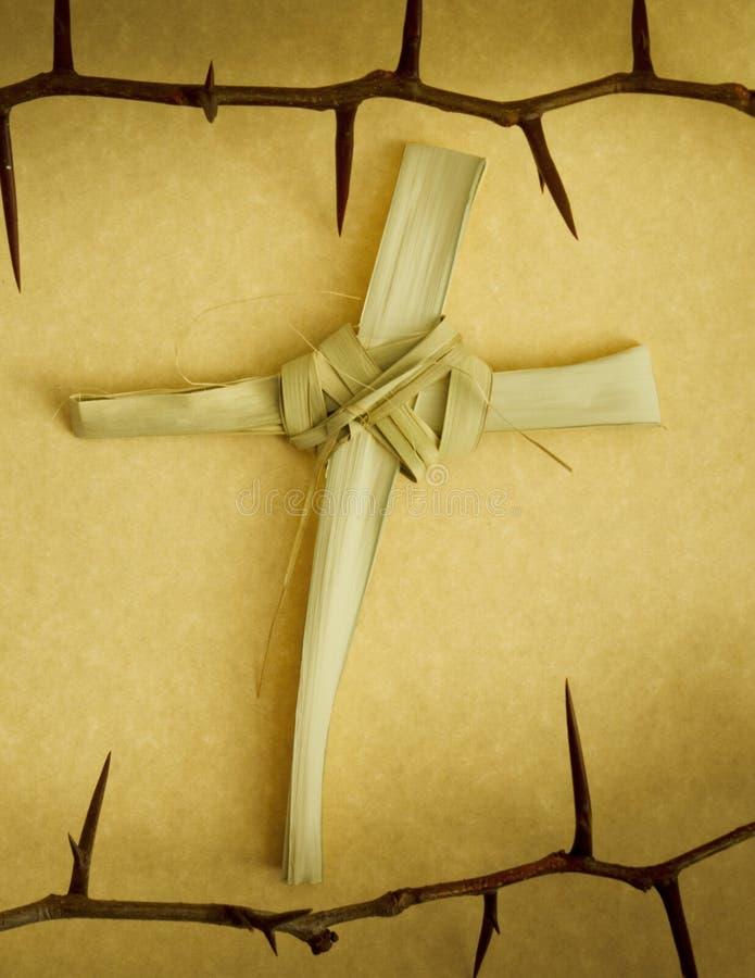 铁海棠围拢的手工制造棕榈分支十字架 库存图片