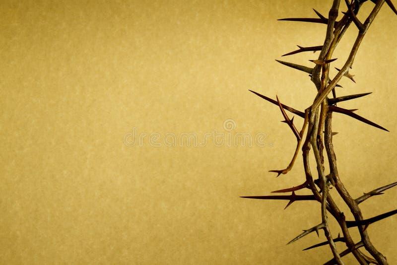 铁海棠代表在基督受难日的耶稣在十字架上钉死 图库摄影