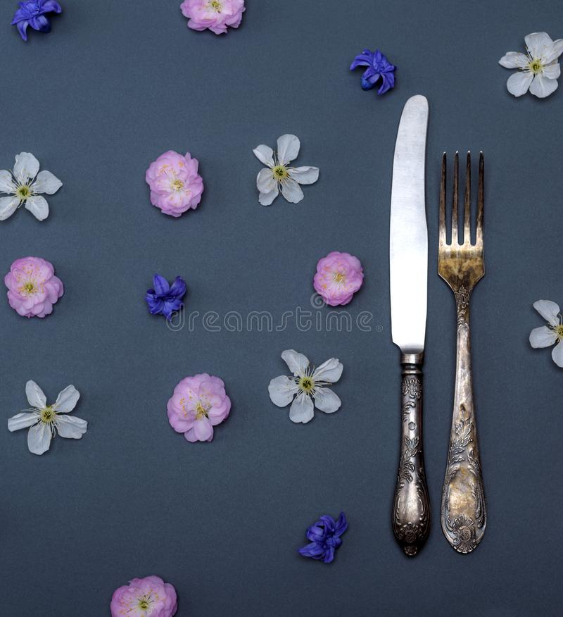 铁葡萄酒利器叉子和刀子 免版税库存图片