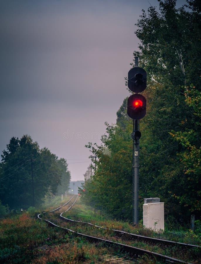 铁路和森林 免版税库存照片