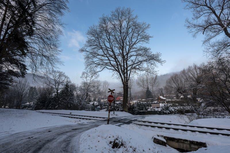 铁路开放段落在多雪的森林里 免版税图库摄影