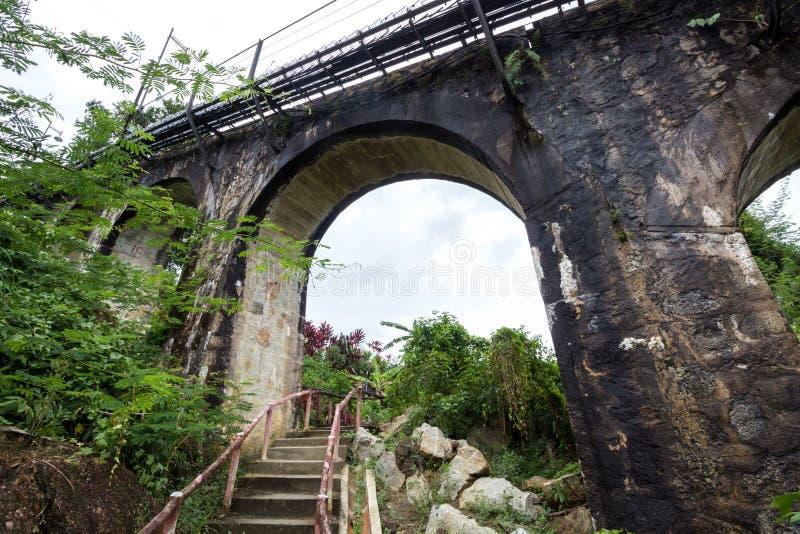 铁路桥在森林里 免版税库存照片