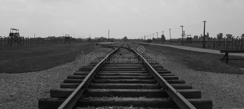 铁路路在比克瑙 免版税库存照片