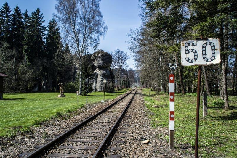 铁路轨道轨道和一个木雕象 免版税库存图片