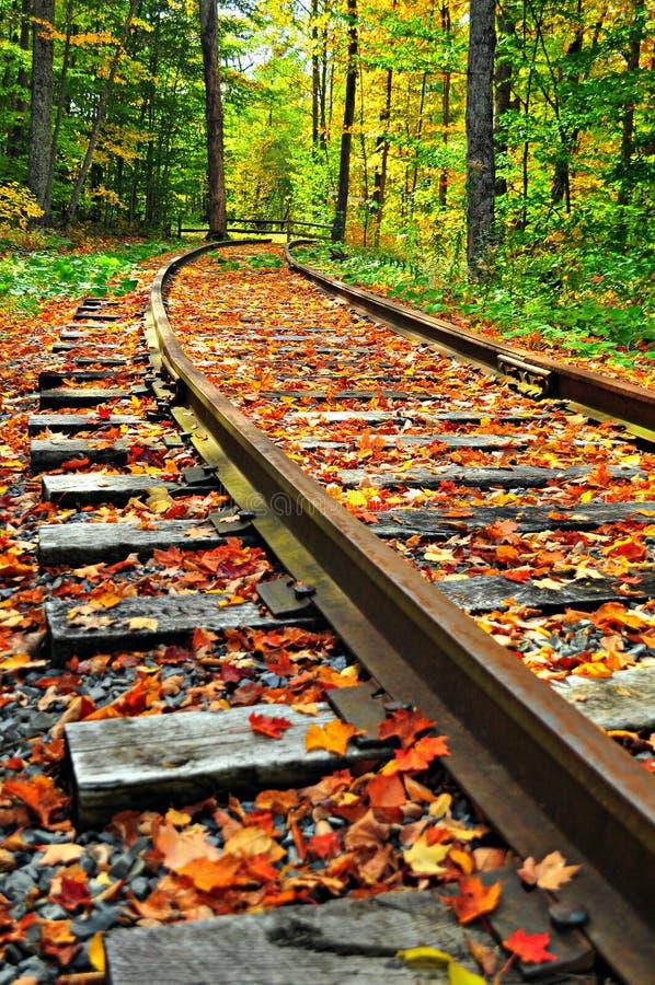 铁路运输乘坐 图库摄影