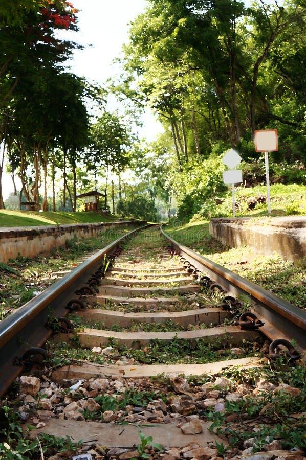 铁路通过森林艺术性的水彩过滤器-调色刀 免版税图库摄影