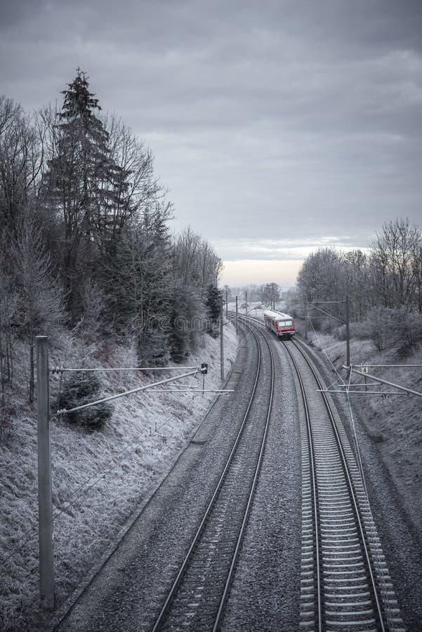 铁轨和红色火车通过多雪的树 库存图片