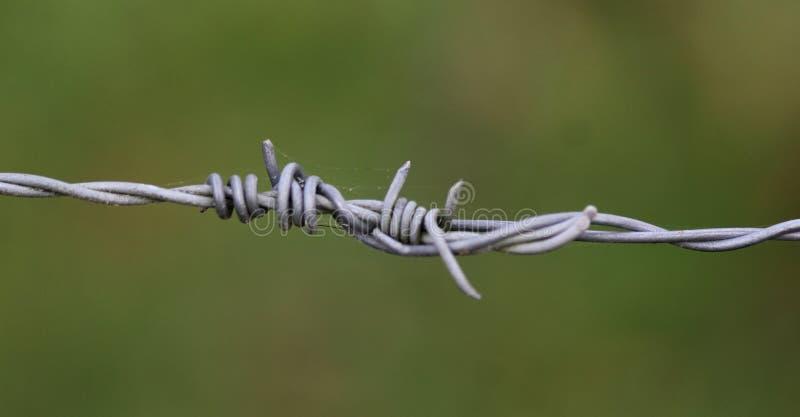 铁钢铁丝网 库存图片