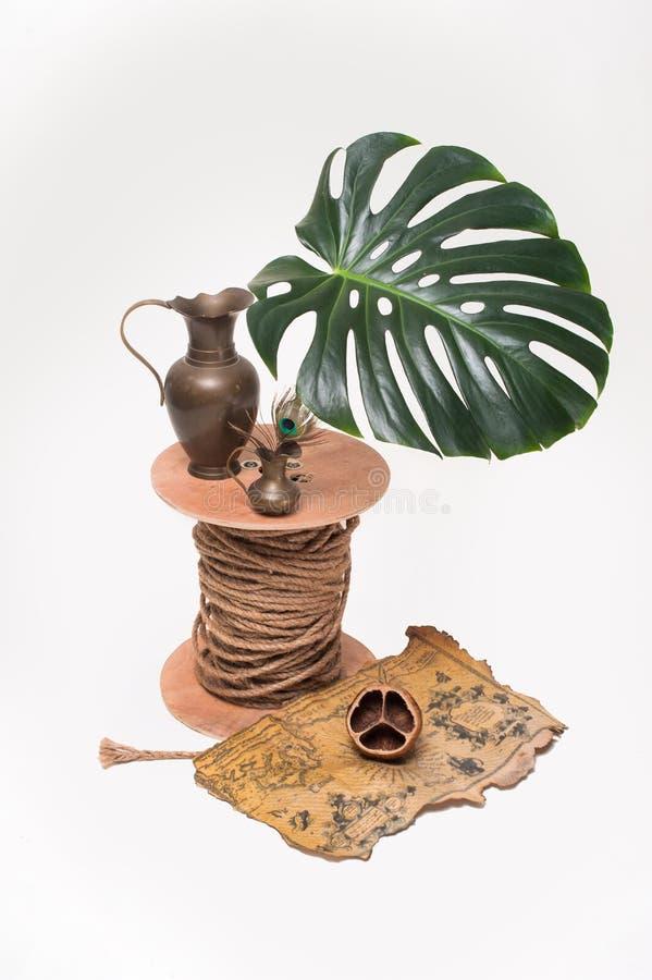 铜potswith在白色背景珍惜并且留下Monstera 免版税库存图片