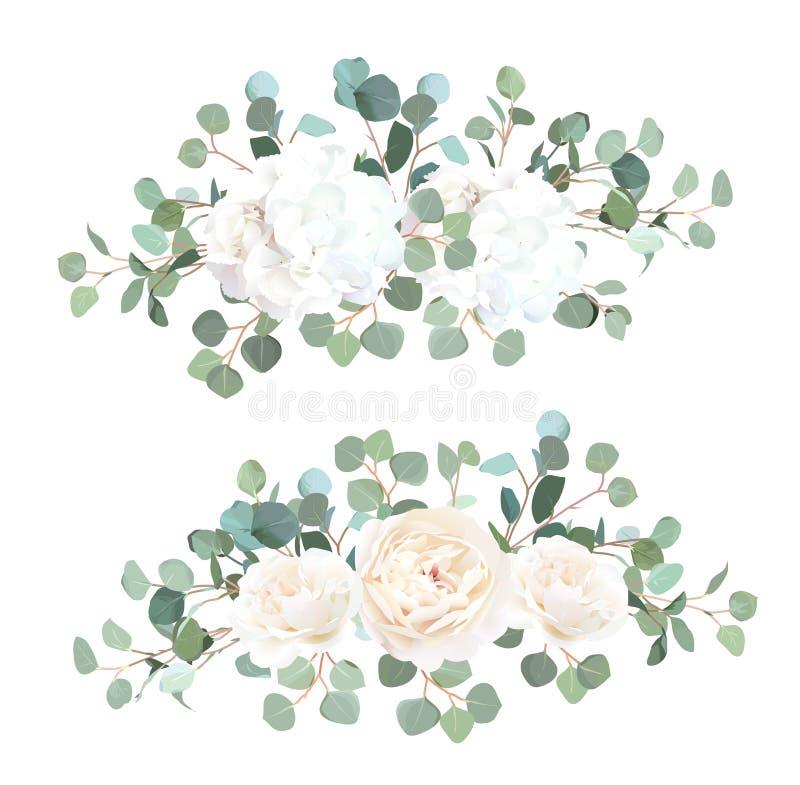 银元玉树、白色玫瑰和八仙花属传染媒介设计 向量例证