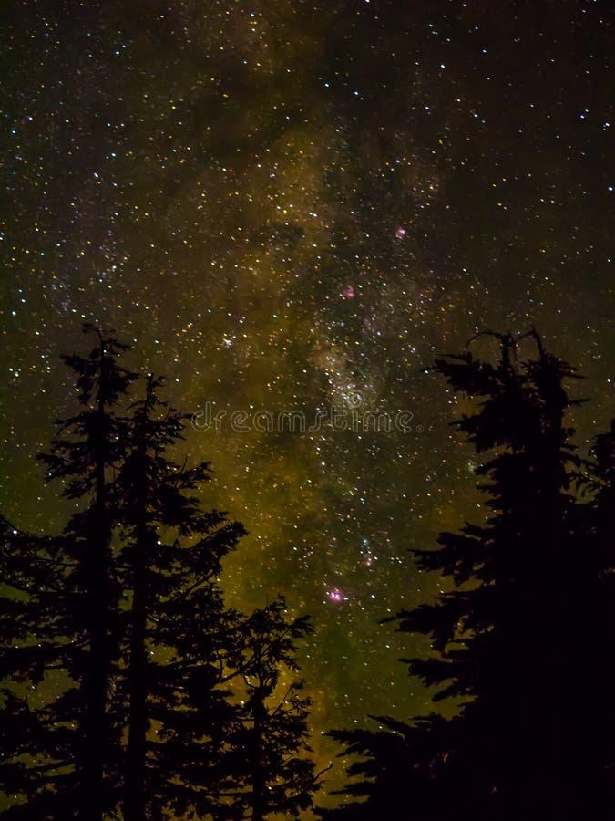 银河和星 库存图片