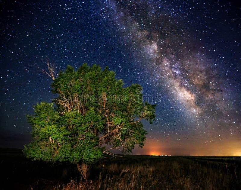银河在国家 免版税图库摄影