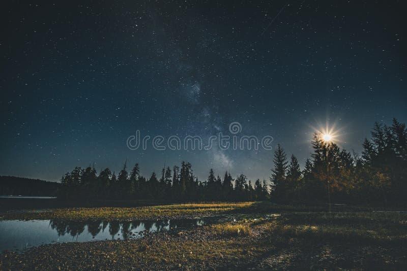 银河星系在森林的夜空有月亮和反射的 温哥华岛, Tofino,加拿大 免版税库存照片