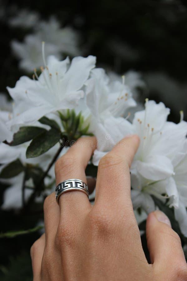 银色圆环和白花在背景中 免版税库存图片