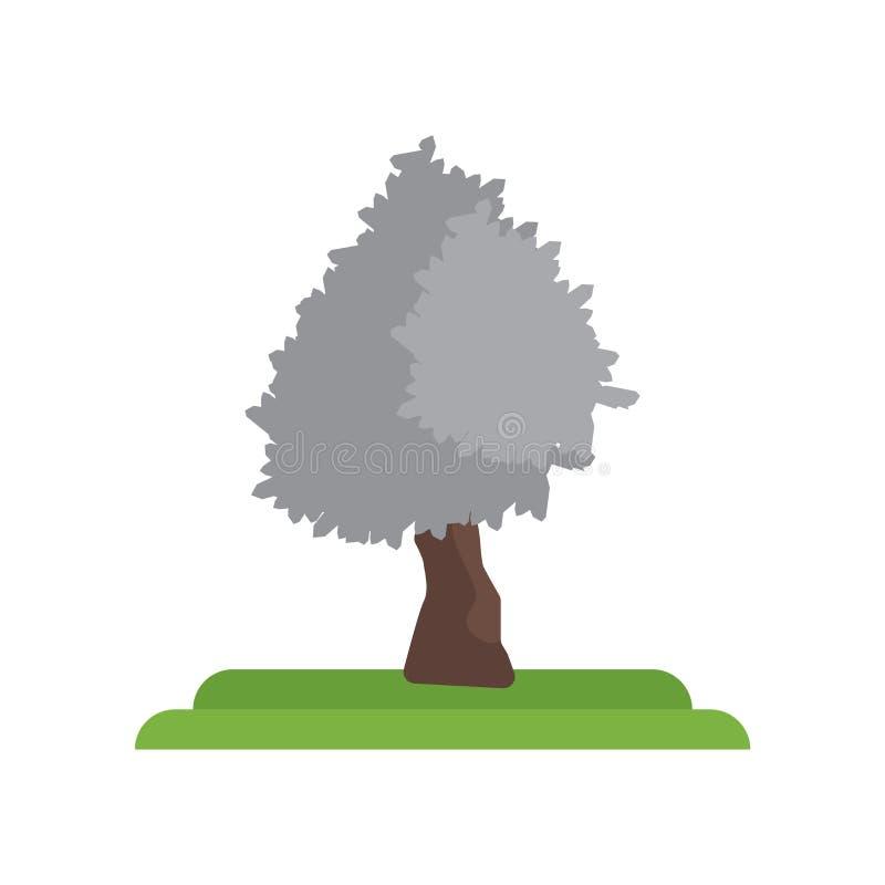 银色槭树象在白色隔绝的传染媒介标志和标志 库存例证