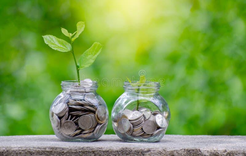 铸造生长从在玻璃瓶子之外的硬币的树玻璃瓶子厂在节约金钱被弄脏的绿色的自然本底和投资 免版税库存图片