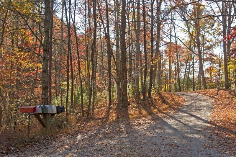 铺石渣在秋天的山路在Smokies 免版税库存照片