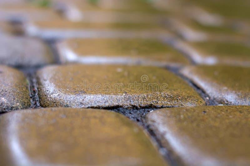 铺路板完全均匀地被放置的石头湿从雨 背景 库存照片