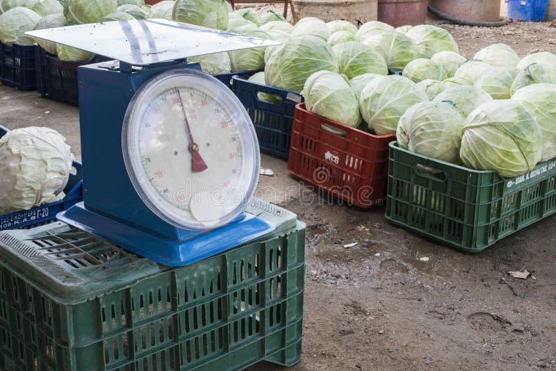 销售圆白菜在市场上 库存照片