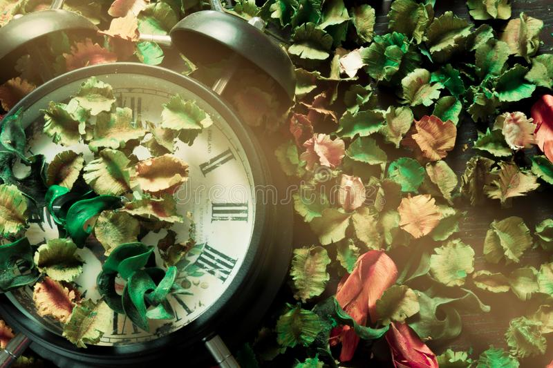 锁在干花,五颜六色的背景,时间,并且记忆相应地改变 免版税库存图片