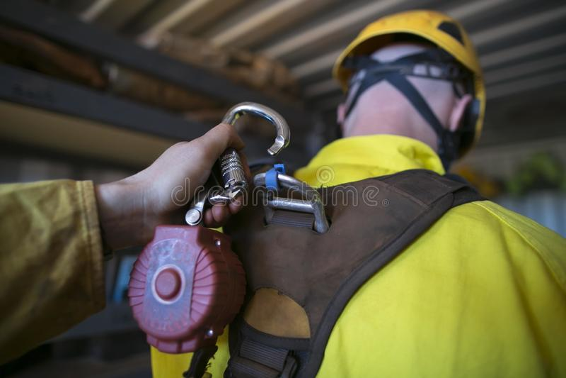 锁carabiner的男性手剪报连接用缩回吸收体保险装置的自已 免版税库存图片