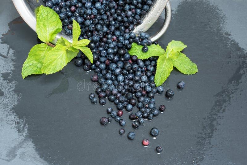 滤锅用新近地被洗涤的有机蓝莓和薄菏在灰色板岩石头板 库存照片